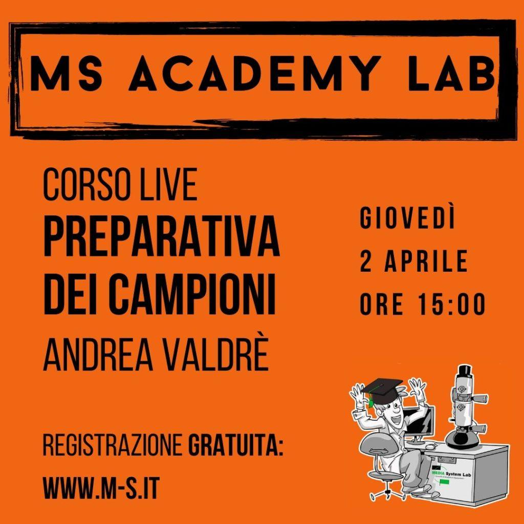ms academy lab-corsi online-formazione professionale-formazione tecnica-corsi microscopia lettronica