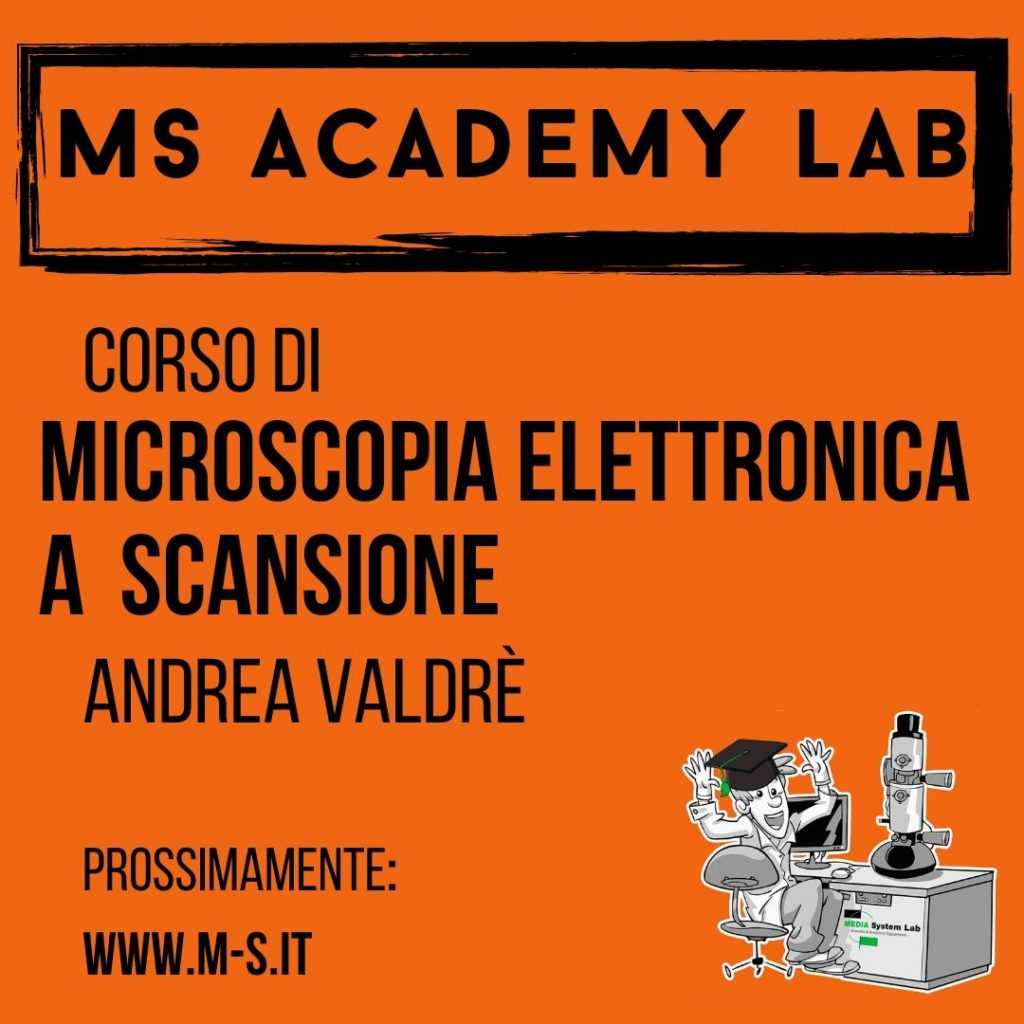microscopia elettronica-microscopio elettronico a scansione-sem